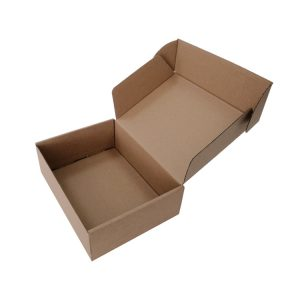 3 layers corrugated box-1