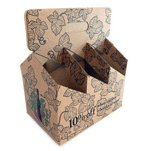 6 pack beer cartons-1