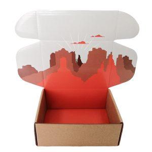 Cardboard box for t-shirt-4