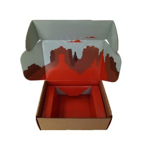 Clothes Mailer Boxes-3
