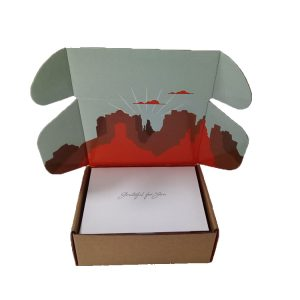 Clothes Mailer Boxes-5