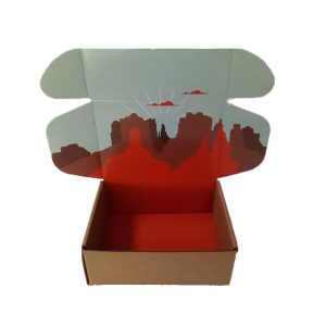 Clothes Mailer Boxes-6