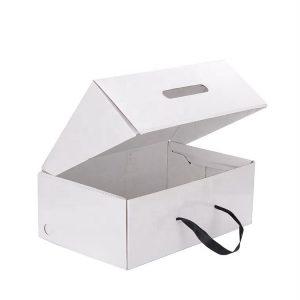 Corrugated shipping shoe box-1