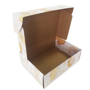 Custom logo mailing box-2