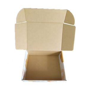Eyeglass Shipping Box-6