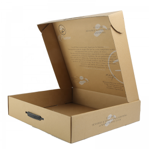 Mailer Box With Handle-1