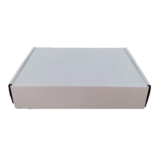 Mailer box-3