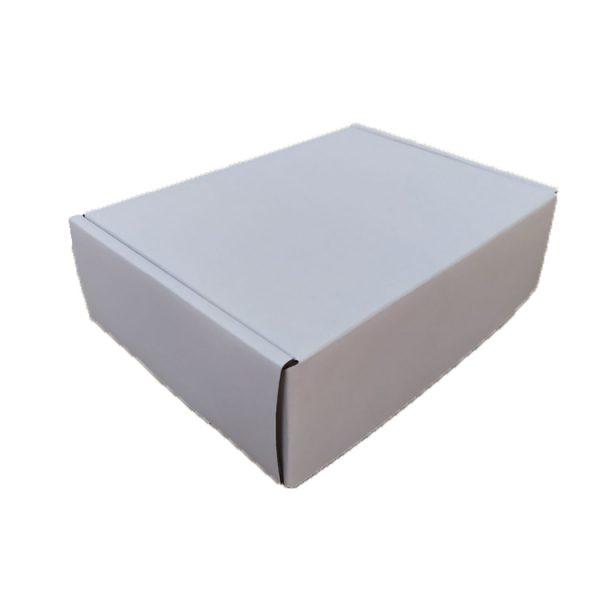 Mailer box-4