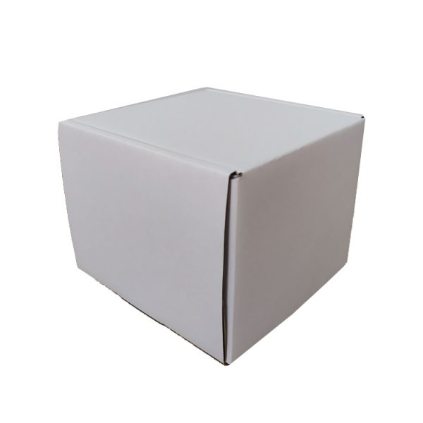 Mailer box-5