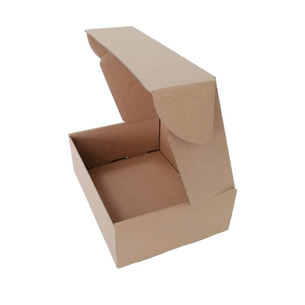 Mailing Cardboard Box-5