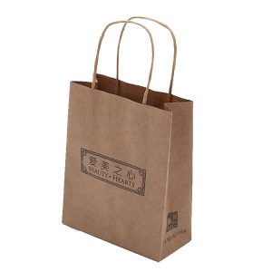 Paper bag shopping-2