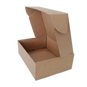 Plain brown shipping box-1
