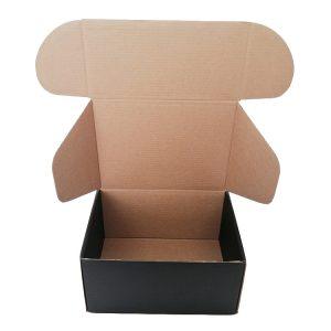 Printed mailer box-2