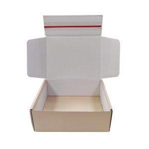 Reusable corrugated box-1
