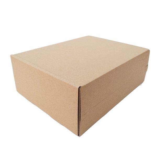 Shipping carton-2
