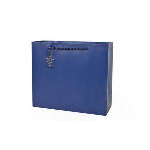 Shopping Paper Bag-1