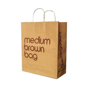 auto machine made paper shopping bag-1
