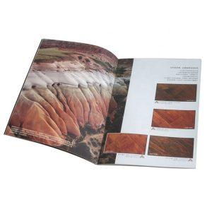 brochure printing-1