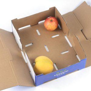 cardboard box fruit-2