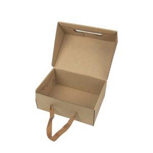 cardboard carry box-1