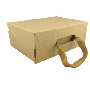 cardboard carry box-2