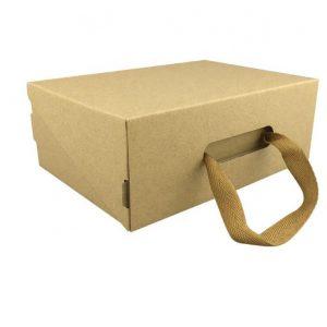 cardboard carry box-2
