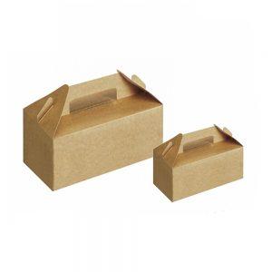 carton food box-1