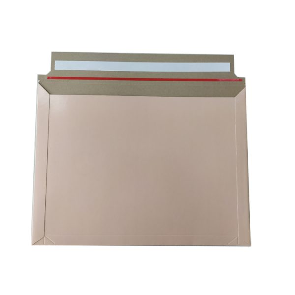 courier envelope-1