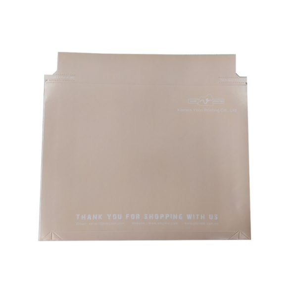 courier envelope-2