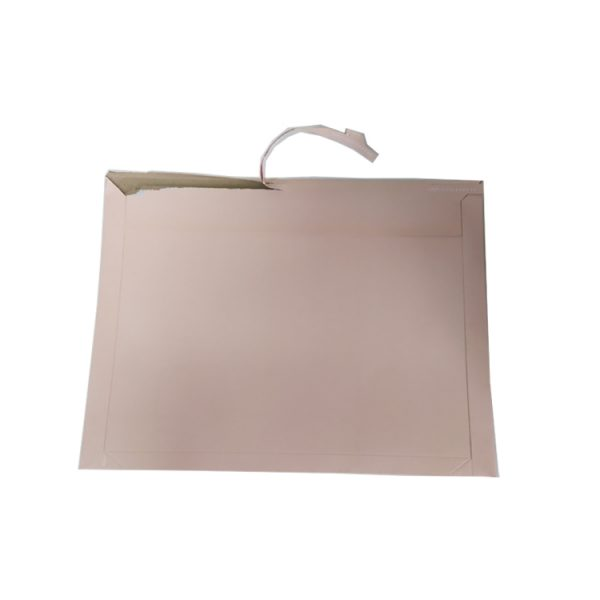courier envelope-4
