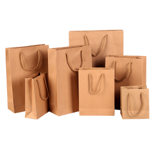 customised paper bag-1