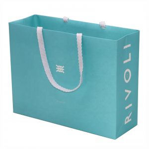customiszed paper bag-2