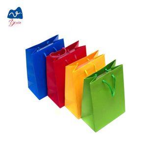 cutomize paper bag-2