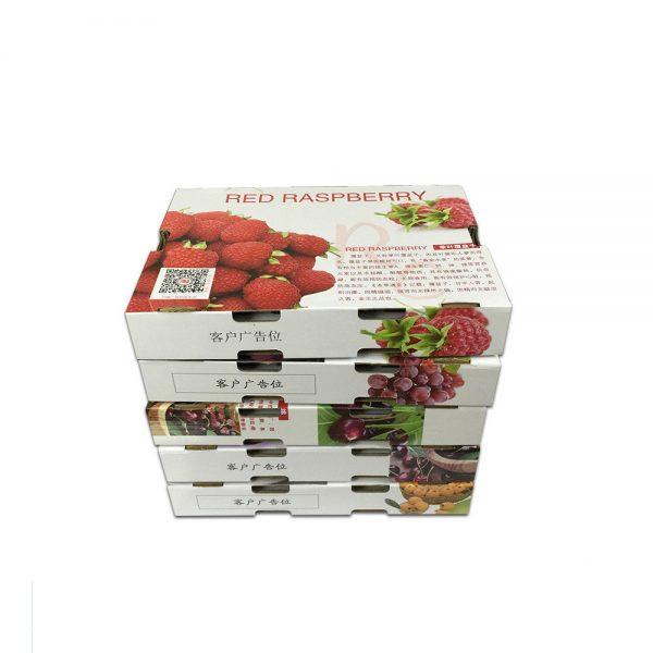 dry fruit gift box-5
