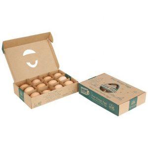 egg cardboard box-1