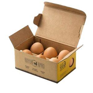egg cardboard box-2