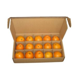 fresh fruit corrugated box packaging-2