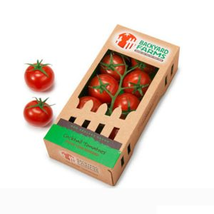 fruit packaging box-1