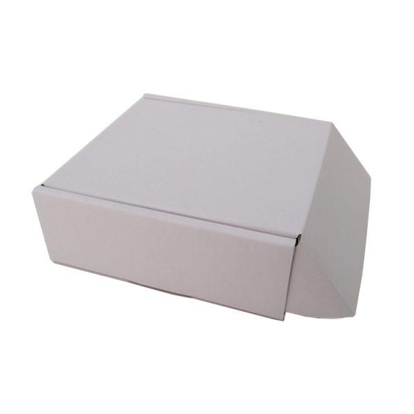 luxury shipping box-3