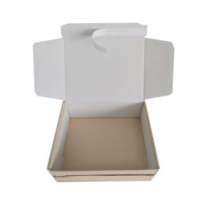 packing box with shipping zipper-2