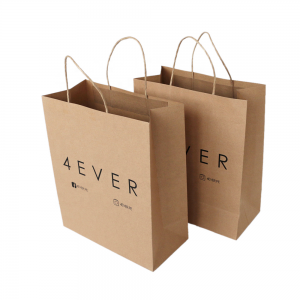 paper package bag-1