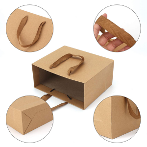 plain paper bag-2