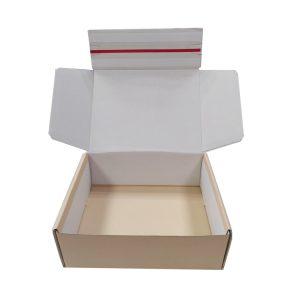 reusable shipping box-1