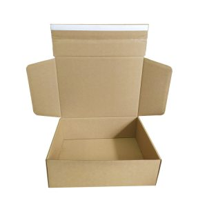shipping box tear strip-1